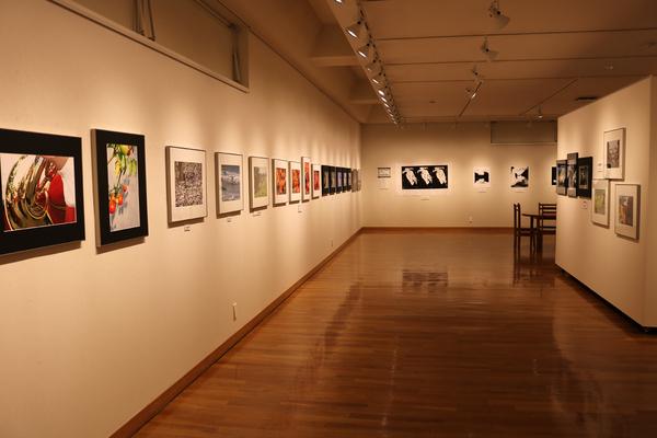 東川町文化ギャラリー展示のお知らせ_b0187229_1953481.jpg