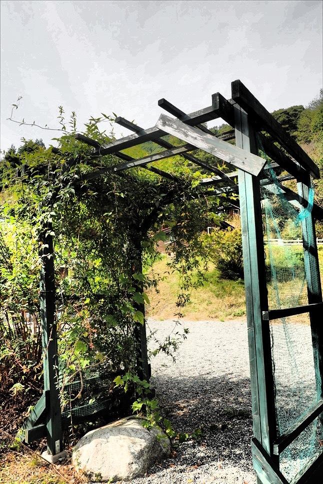 【レポート】Foresters Village Kobitto(フォレスターズビレッジ・コビット 南アルプス)キャンプ編 ① ~やはりコビットは「ナチュラルテクスチャー」の宝庫であることが変わらない_b0008655_00140643.jpg