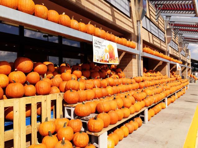Happy Halloween_d0343573_10292918.jpg