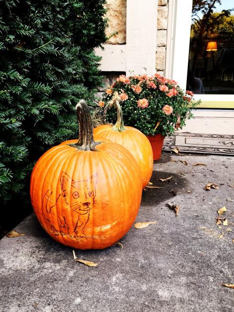 Happy Halloween_d0343573_10323736.jpg