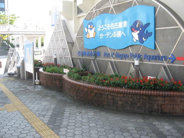 ガーデンふ頭総合案内所前花壇の植替えH28.10.19_d0338682_12593113.jpg