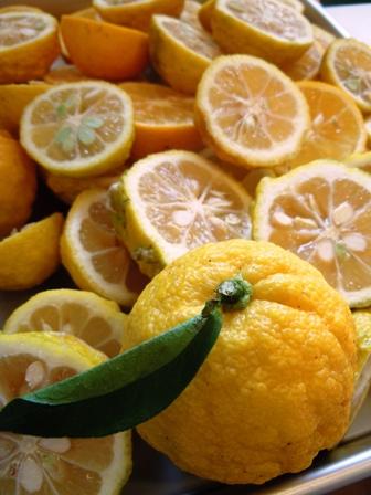 2016-11-10 Thu : 柑橘たっぷりポン酢作り講座_d0298850_23415215.jpg