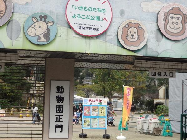福岡市動物園に行ってきました_f0337554_15000090.jpg