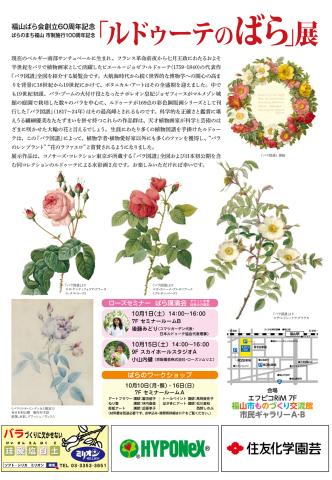 「バラ図譜」中最も優雅なバラ(?)、ロサ・ケンティフォリア・ブラータ(レタス・ローズ)_e0356356_18465259.jpg