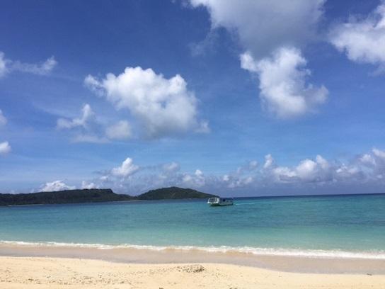 西表島 5_f0202682_14205434.jpg