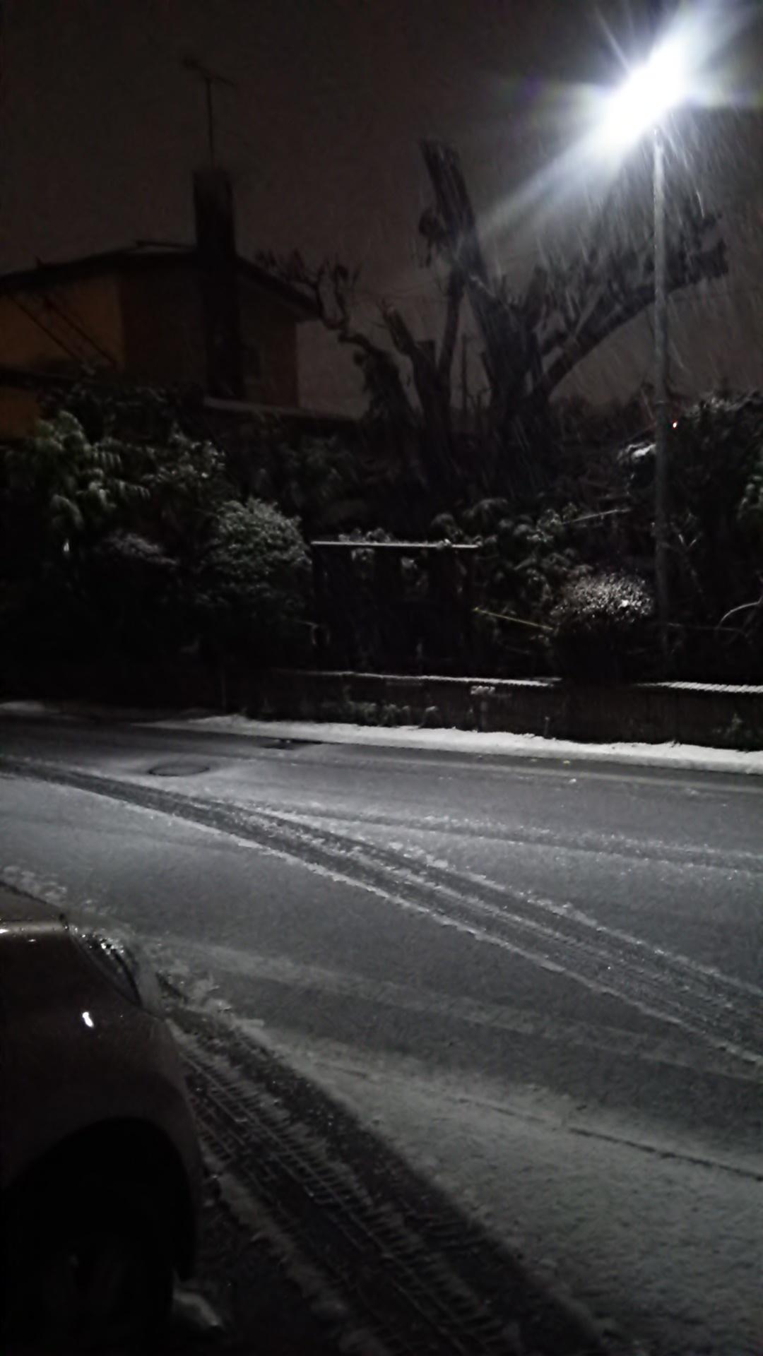 初雪_b0343293_22444761.jpg