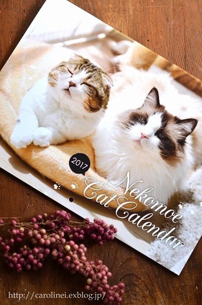 「ねこもえ」掲載のお知らせ  Cat Magazine Nekomoe Debut_d0025294_10054489.jpg
