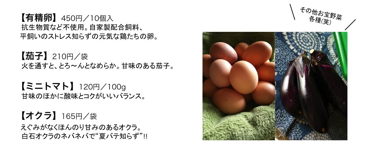 第4回 白石俊英さん・雅子さん Vol.2_e0348199_14043353.jpg