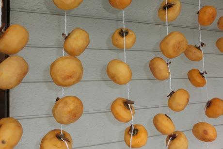 柿を干す・赤い実2種など_a0203003_17421117.jpg