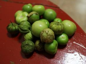 新大陸メキシコのフルーツ② 袋被りトマテスとか_c0030645_21333792.jpg