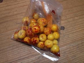 新大陸メキシコのフルーツ② 袋被りトマテスとか_c0030645_2148638.jpg