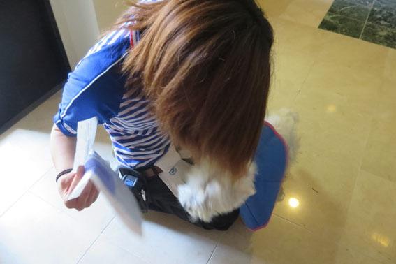 佐川急便のお姉さん_b0107163_00290188.jpg