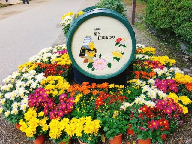 d0131668_1135412.jpg