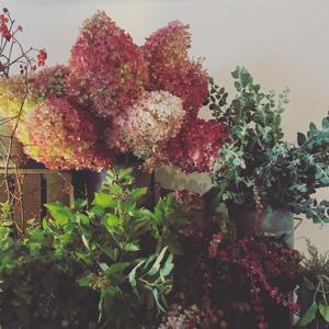 秋色のおはな_b0209477_14320377.jpg