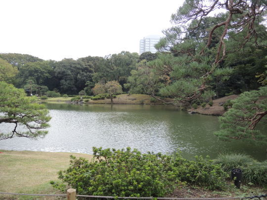 六義園は和歌の庭_e0232277_18182960.jpg