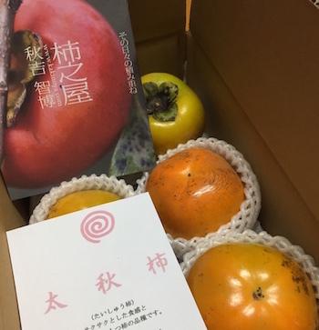 夏の葡萄の終了と秋の柿の始まり。_f0018099_02565700.jpg