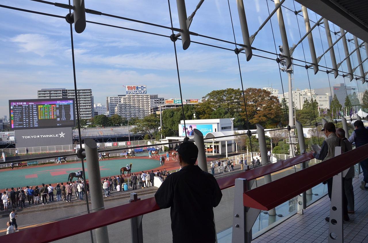 東京シティケイバ_d0065116_21363852.jpg