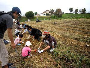 さつまいも収穫体験_d0120421_11031083.jpg