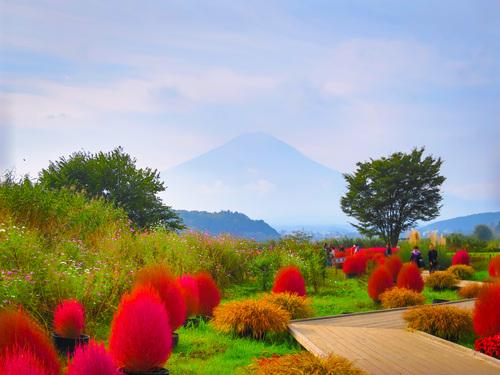 2016.10.22富士山いろいろ_e0321032_2323999.jpg