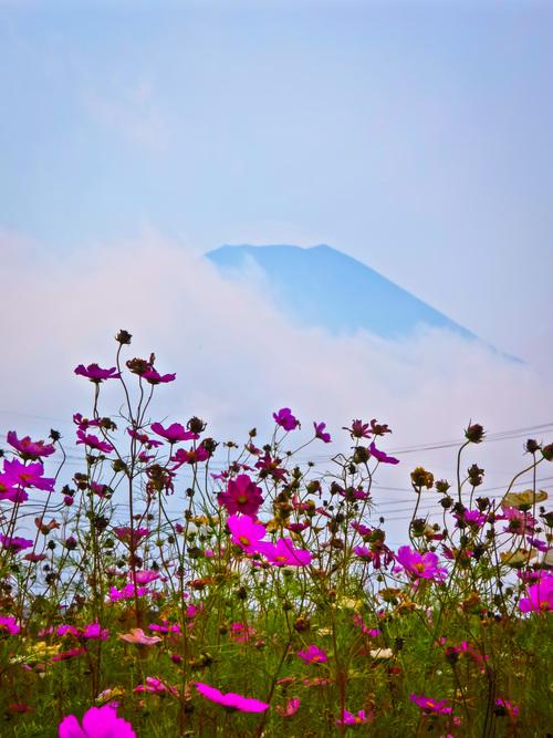 2016.10.22富士山いろいろ_e0321032_23251920.jpg