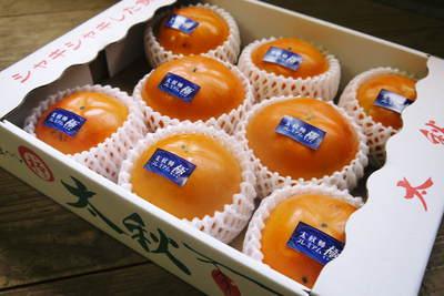 太秋柿 秋の果実の王様『太秋柿』が最旬を迎え大好評販売中!柿は体内のアルコール分解にも良いんです!_a0254656_1891082.jpg