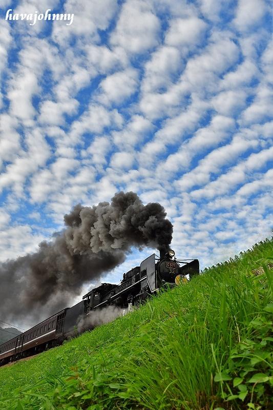 うろこ雲と貴婦人~SLやまぐち号~_c0173762_21143865.jpg