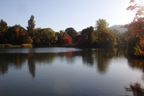 「秋の中島公園」 オーソドックスに行ってきました。_f0362073_05390292.jpg