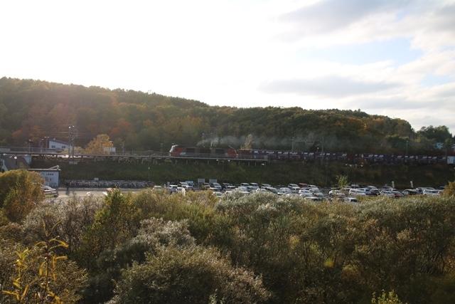 藤田八束鉄道の秋@貨物列車を追って千歳線上野幌からの写真。秋の山々を走る貨物列車レッドベア_d0181492_22531819.jpg