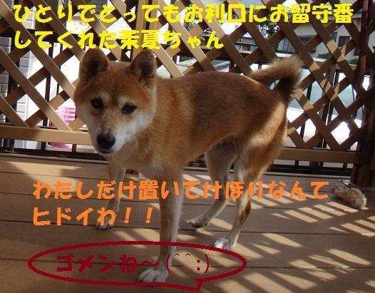 f0121712_14543083.jpg