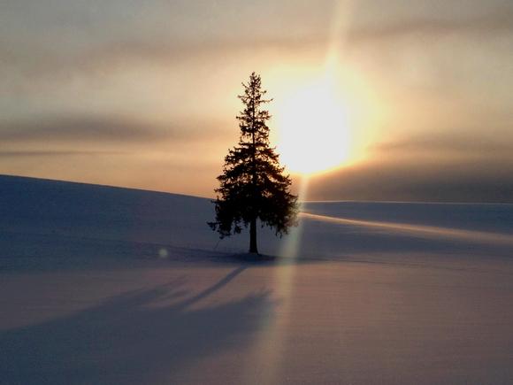 冬営業のお知らせです。_f0096216_19574672.jpg