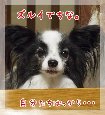 d0013149_00313221.jpg