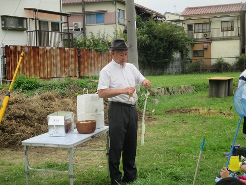 玉ねぎの植え付け 終了です(\'◇\')ゞ_f0079749_19515945.jpg