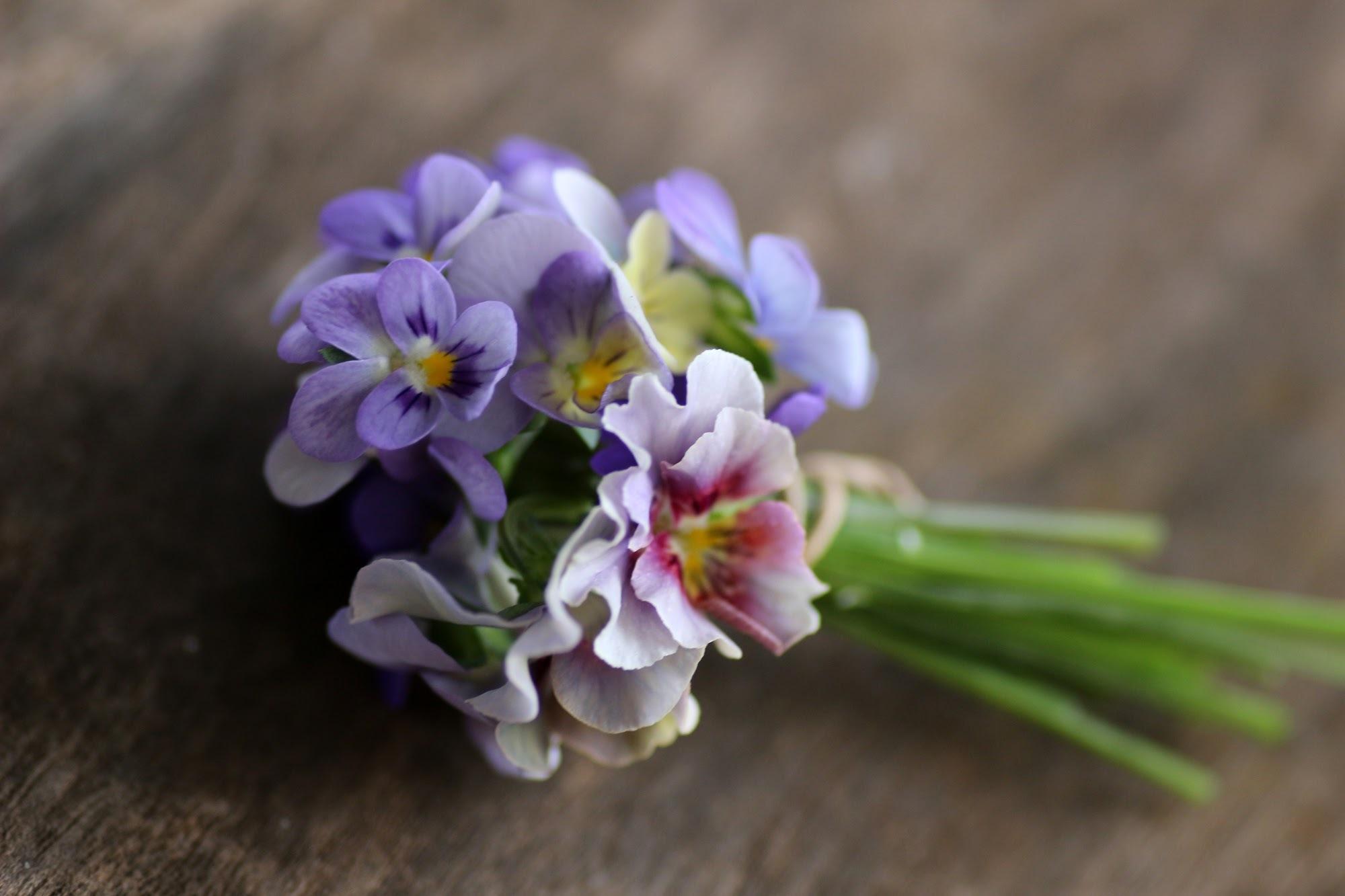 花が選んだ人・・・・_b0137969_06321039.jpeg