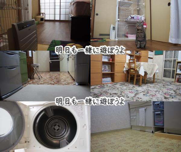 b0239781_22002227.jpg