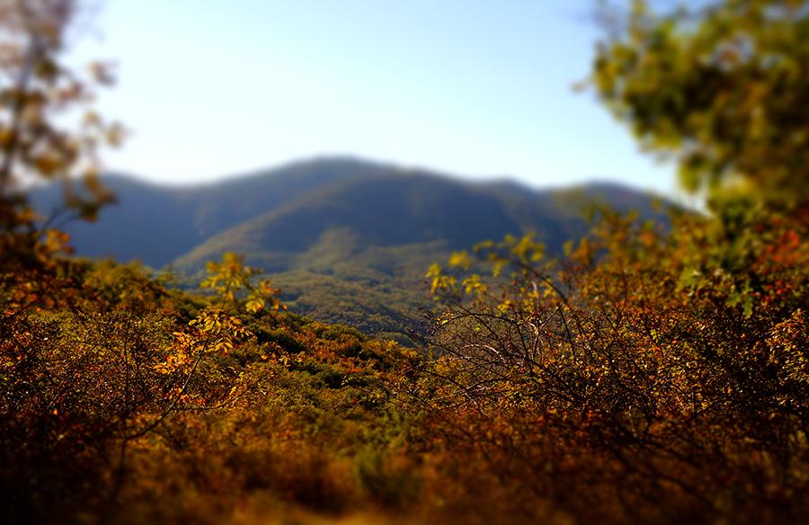 秋が深まるトスカーナ_f0106597_00514945.jpg