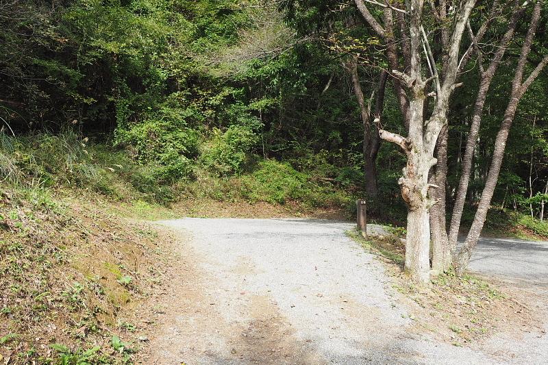 【キャンプ場施設レポート】Foresters Village Kobitto(フォレスターズビレッジ・コビット 南アルプス)②_b0008655_11492281.jpg