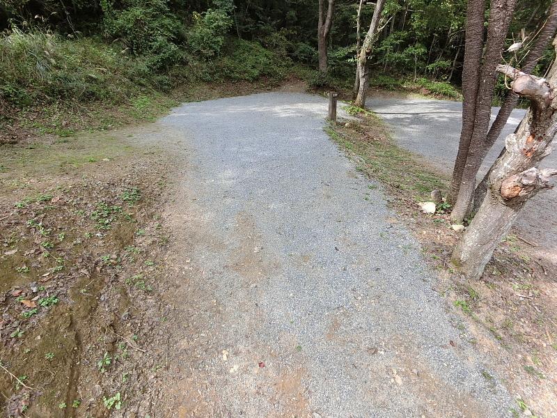 【キャンプ場施設レポート】Foresters Village Kobitto(フォレスターズビレッジ・コビット 南アルプス)②_b0008655_11550447.jpg