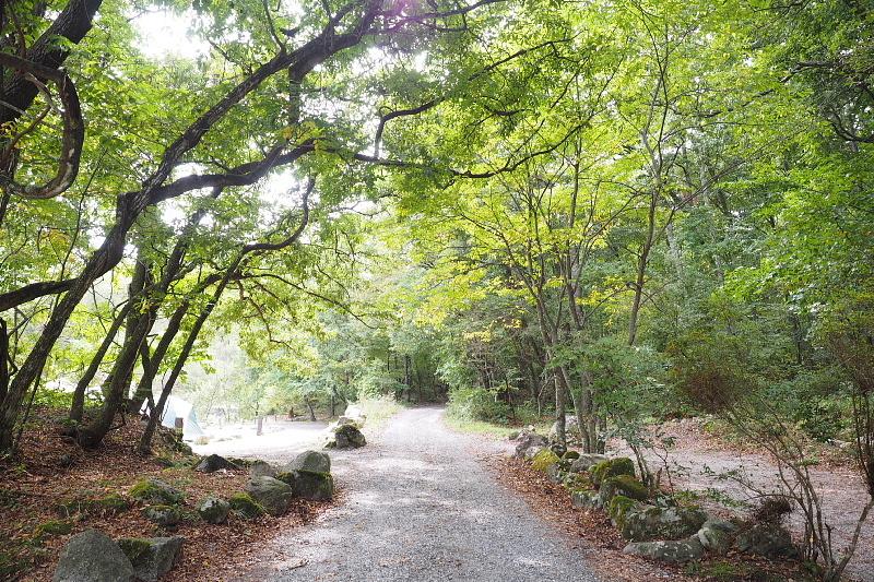 【キャンプ場施設レポート】Foresters Village Kobitto(フォレスターズビレッジ・コビット 南アルプス)②_b0008655_12151587.jpg