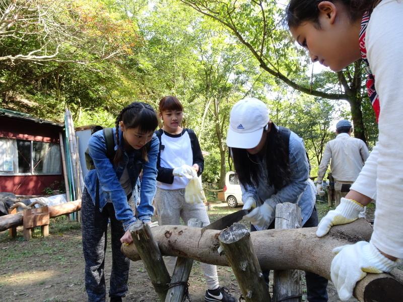 岬高校「山海人プロジェクト2016 」  in 孝子の森  by  (TATE-misaki) _c0108460_19290755.jpg