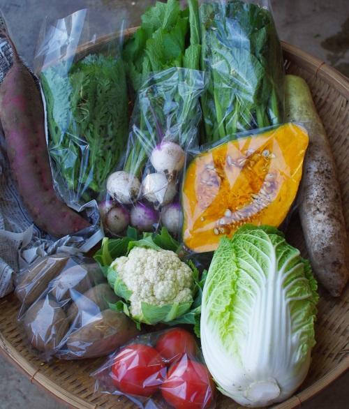 今週の野菜セット(10/25~10/29着)_c0110869_13211138.jpg