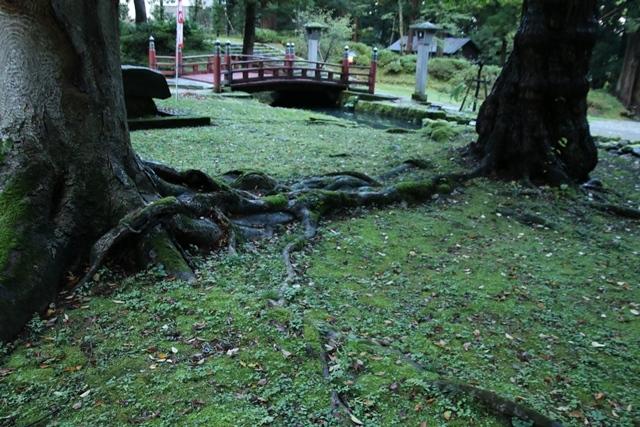 JALで行く青森の旅@深い信仰を受ける岩木山神社を訪ねて・・・神秘的姿を見せた岩木山_d0181492_07504871.jpg