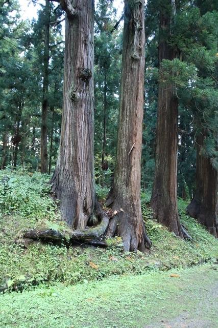 JALで行く青森の旅@深い信仰を受ける岩木山神社を訪ねて・・・神秘的姿を見せた岩木山_d0181492_07513524.jpg