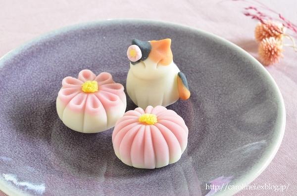 菊花と猫の練りきりで、秋を楽しんでみませんか  Homemade Chrysanthemum & Cat Nerikiri_d0025294_13231240.jpg