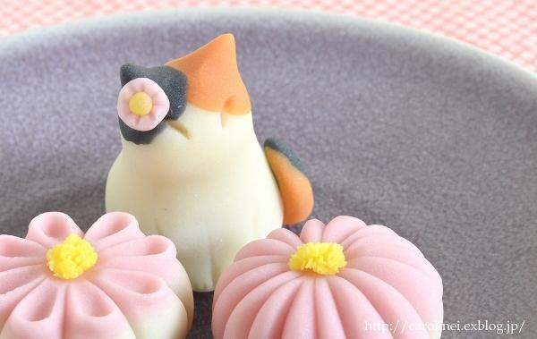 菊花と猫の練りきりで、秋を楽しんでみませんか  Homemade Chrysanthemum & Cat Nerikiri_d0025294_13233377.jpg