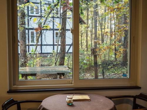 """カフェの窓からみる""""秋""""・・エゾリス君のいる風景。_f0276498_23261375.jpg"""