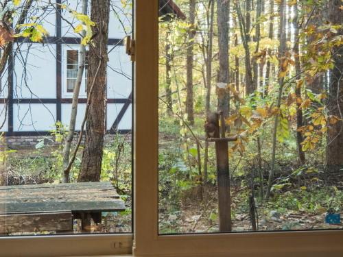 """カフェの窓からみる""""秋""""・・エゾリス君のいる風景。_f0276498_23274576.jpg"""