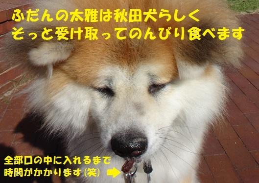 f0121712_06592684.jpg