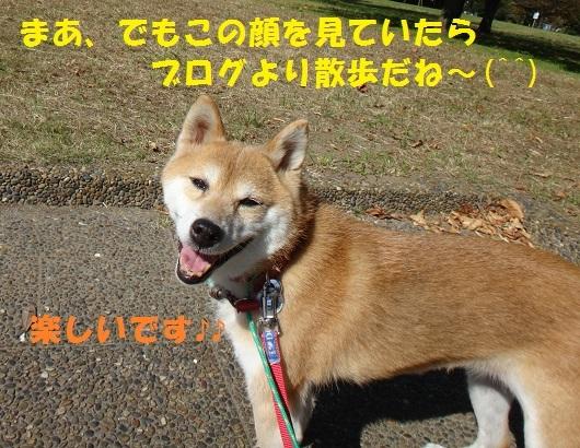 f0121712_07131203.jpg