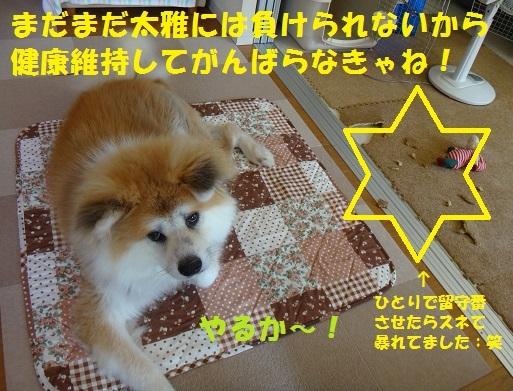 f0121712_15390179.jpg