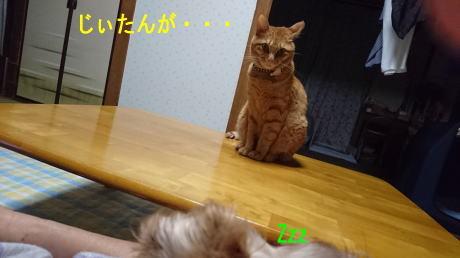 d0013645_21201861.jpg